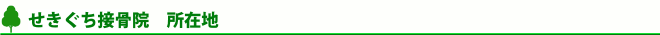 埼玉県さいたま市見沼区南中野のせきぐち(関口)接骨院の地図